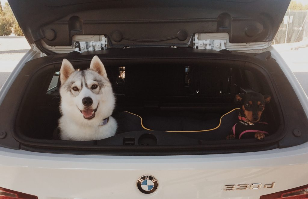 Greysibe_Viajar en coche