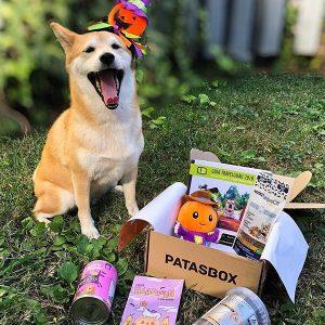 Halloween - Patasbox