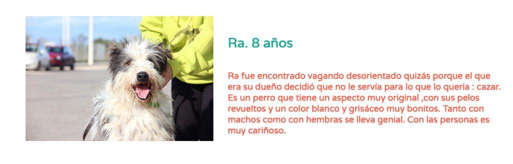 #Elveranoencasa_Ra