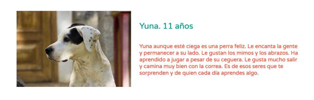 #Elveranoencasa_yuna