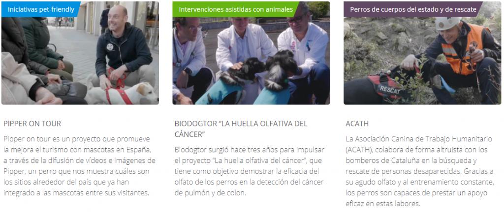 Programa Bayer Dejemos Huella