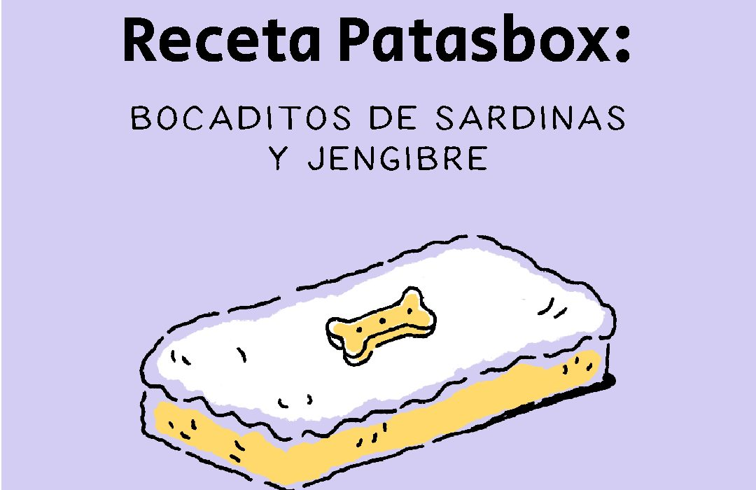 Recetas_para_perros
